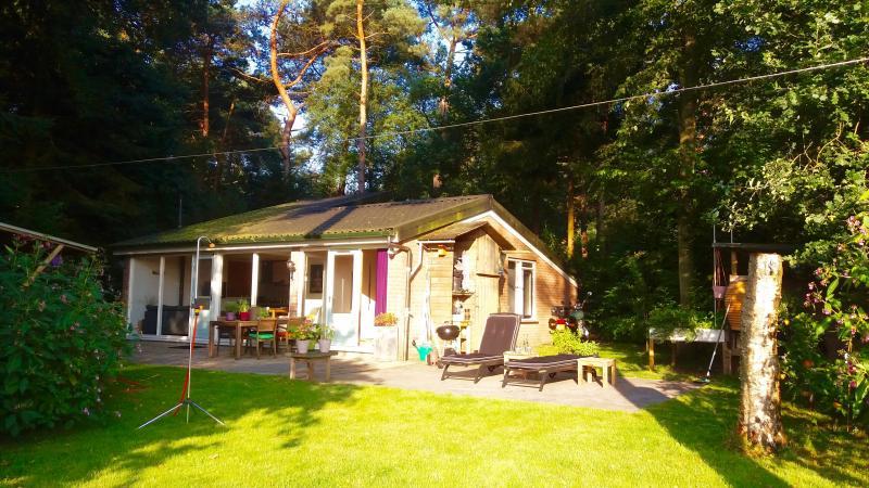 Vakantiehuisje met sauna en 100 rust en privacy for Vakantiehuisje bos
